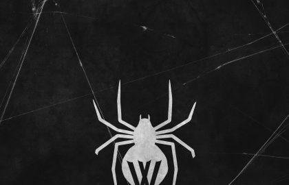 Wiguez spider