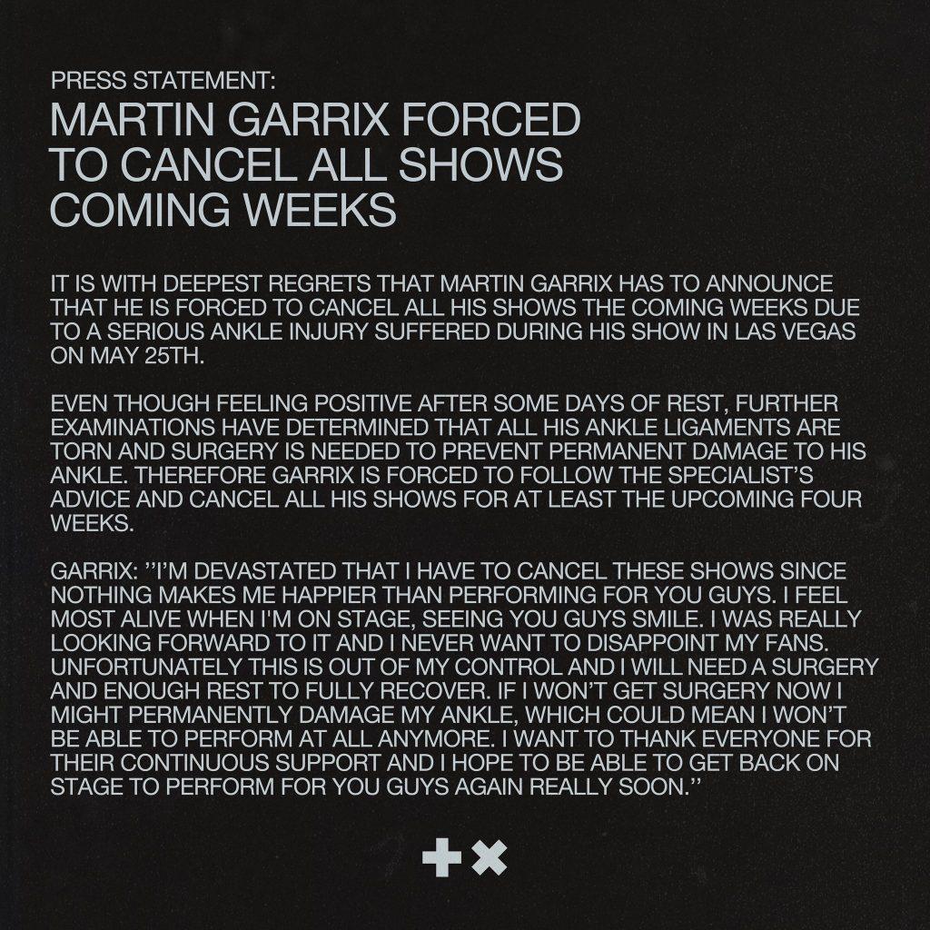 Martin Garrix cancela sus siguientes shows